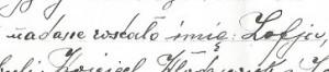 genealogia2 rodziny - dokumenty